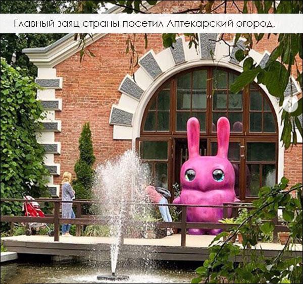 розовый заяц, скульптура в городе, Ольга Муравина